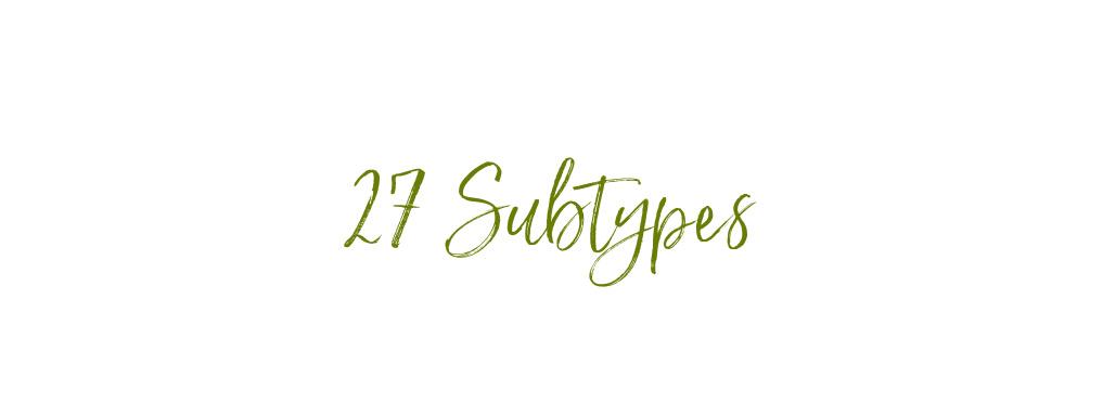 27 Subtypes